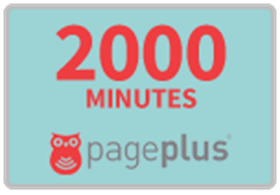 Picture of Page Plus PayGo $80